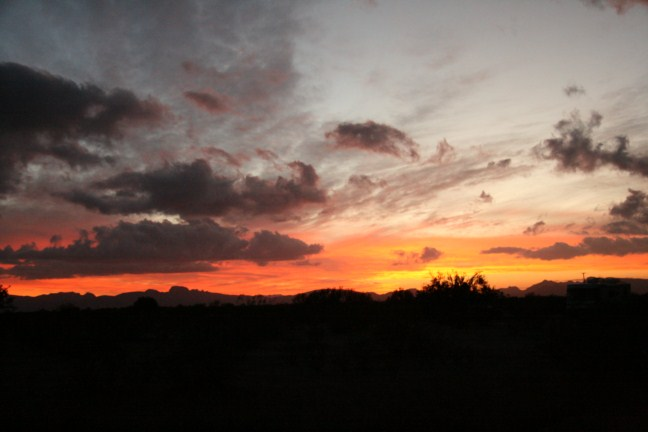 Oh to be in the desert in early dawn